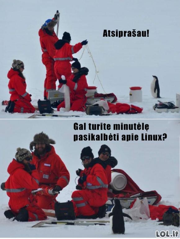 Kartą Arktyje