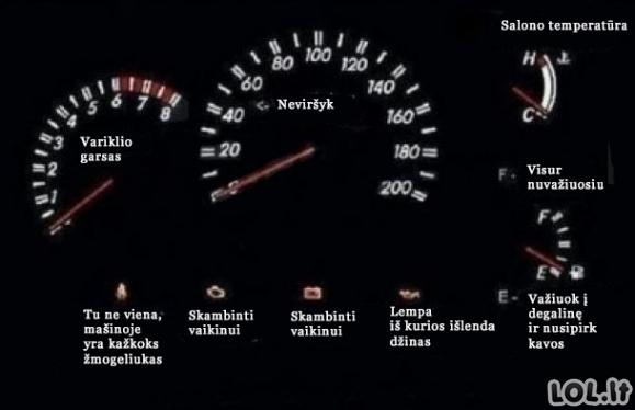 Ką mato merginos automobilyje