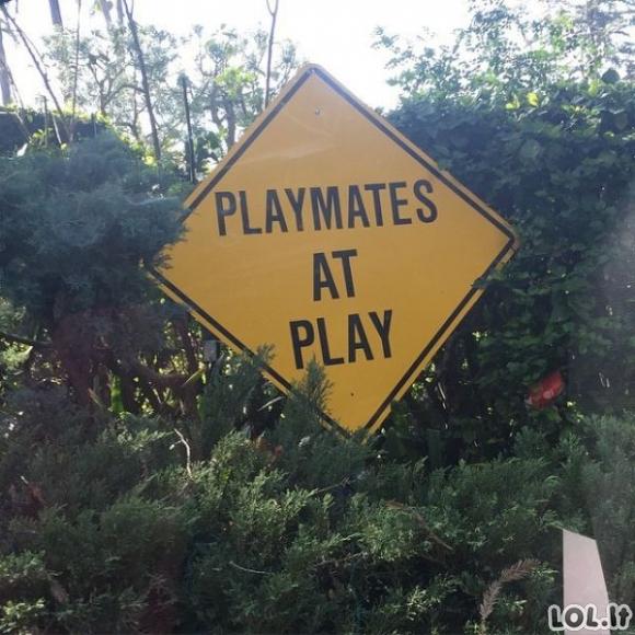 Kaip atrodo gyvenimas Playboy rūmuose