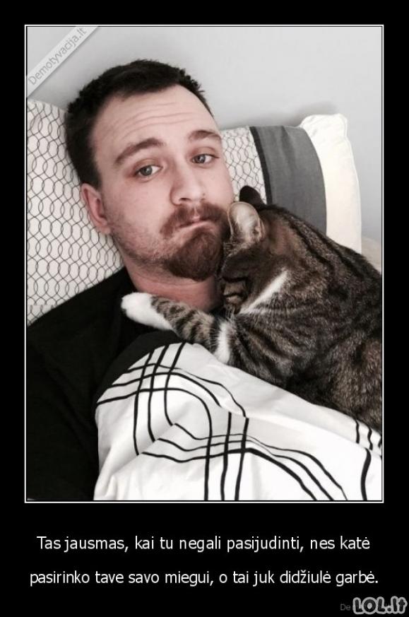 Didžiausias pripažinimas katės šeimininkui