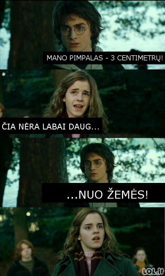 Visa tiesa apie Hario Poterio penį