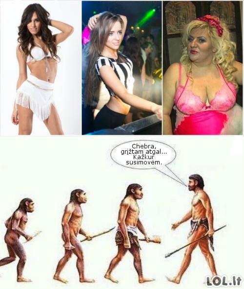 Evoliucijos bug'ai