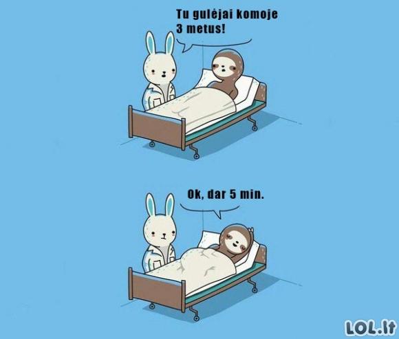 Tipiškas pabudimas