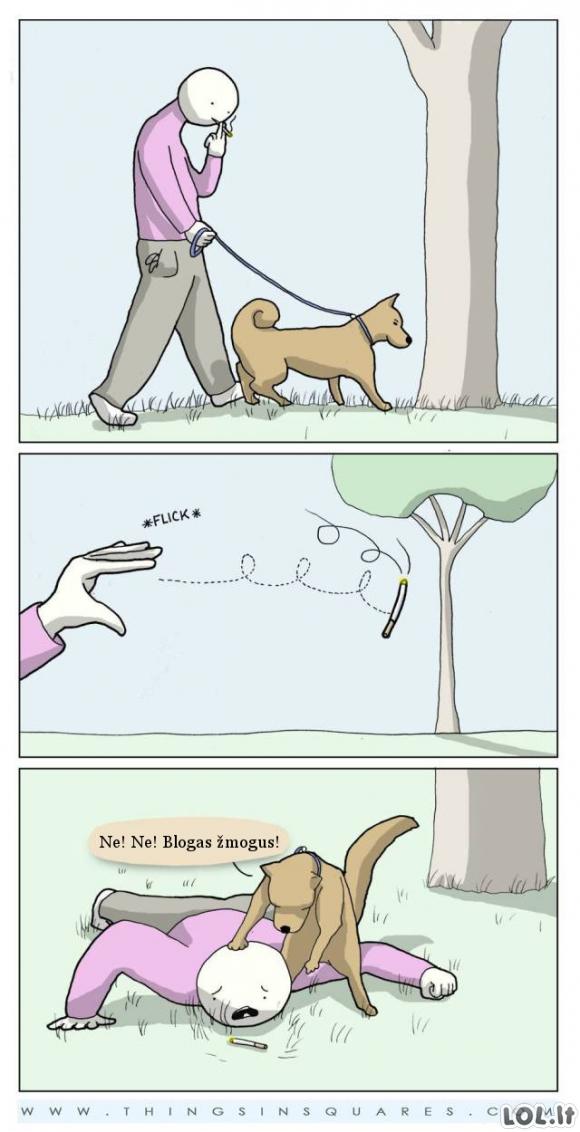 Jei šunys dresuotų mus