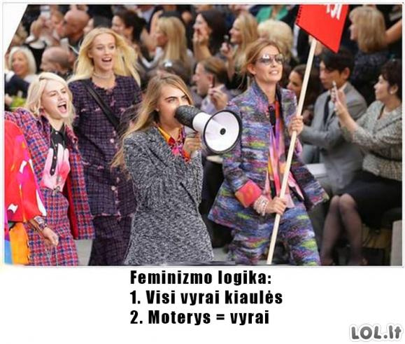 Feminizmo logika