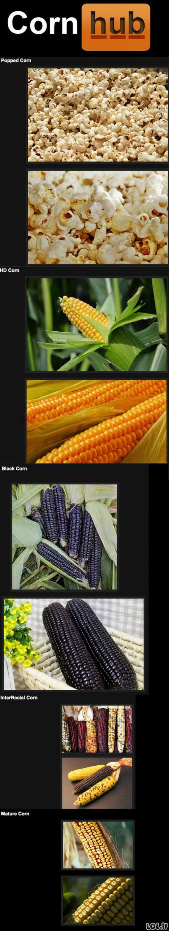Kukurūzai suaugusiems