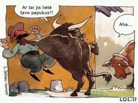 Kas lindo prie karvytės?