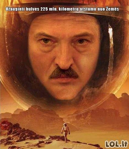 Baltarusietis