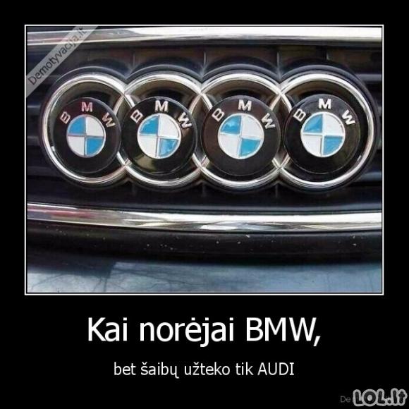 Audi svajonė