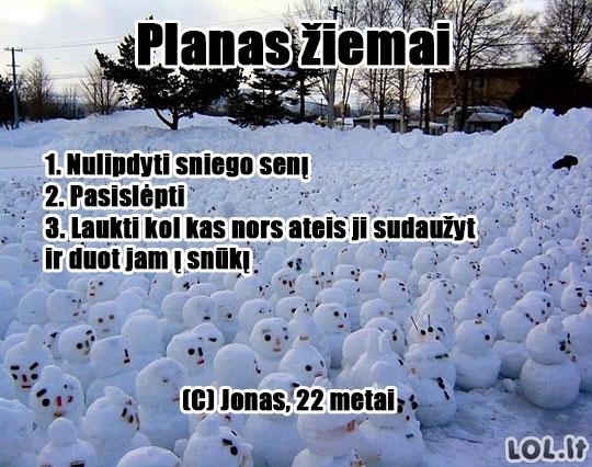 Žiemos planas-chuliganas