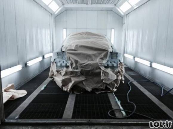Kaip paprastas BMW virto tikru žvėriuku