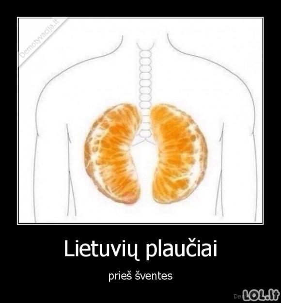 Šventiniai plaučiai
