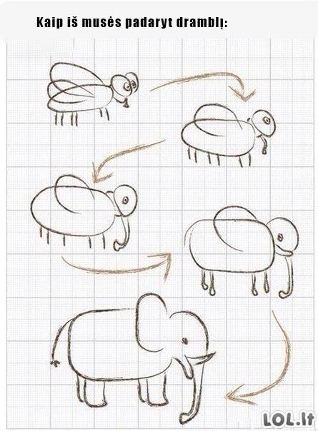 Kaip iš musės padaryt dramblį?