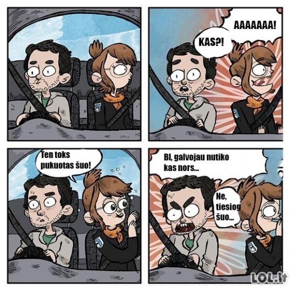 Pavojingas vairavimas su mergina