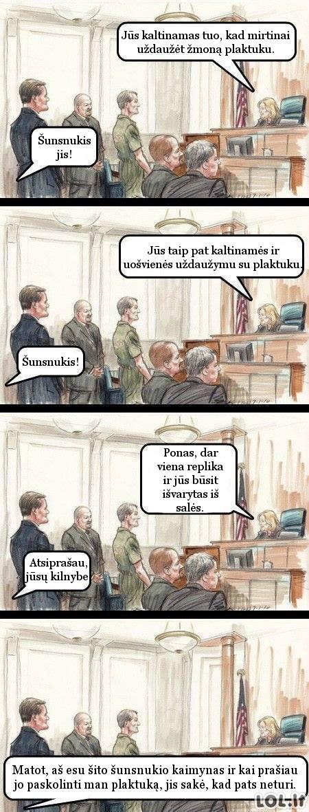 Juodasis humoras: Kaimyno teismas (N-18)