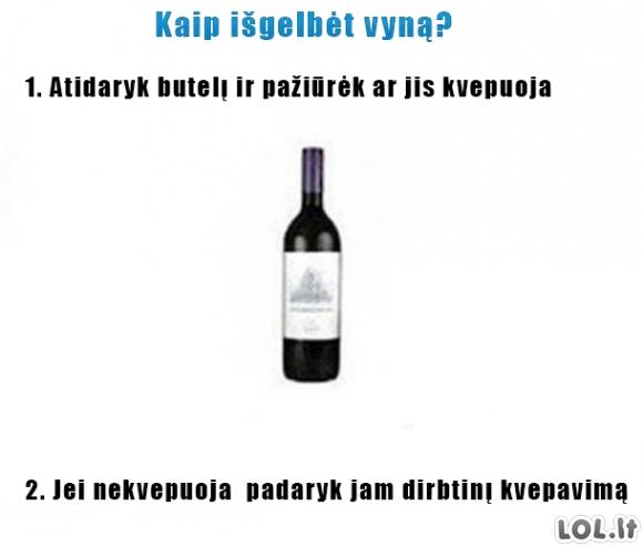 Vyno gelbėjimo planas