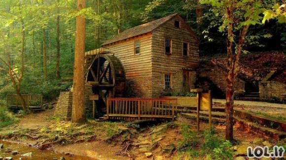 Namai, į kuriuos norėtum pabėgti nuo miesto šurmulio