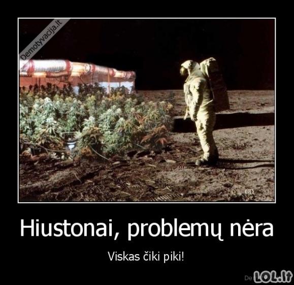 Problemų sprendėjas