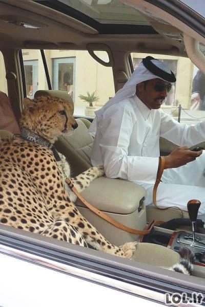 Kaip atrodo kasdienis gyvenimas Dubajuje?