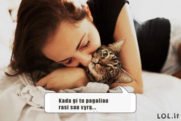 Visų kačiukų svajonės