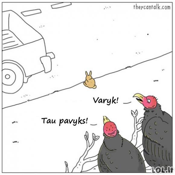 Jei gyvūnai galėtų kalbėti [10 FOTO]