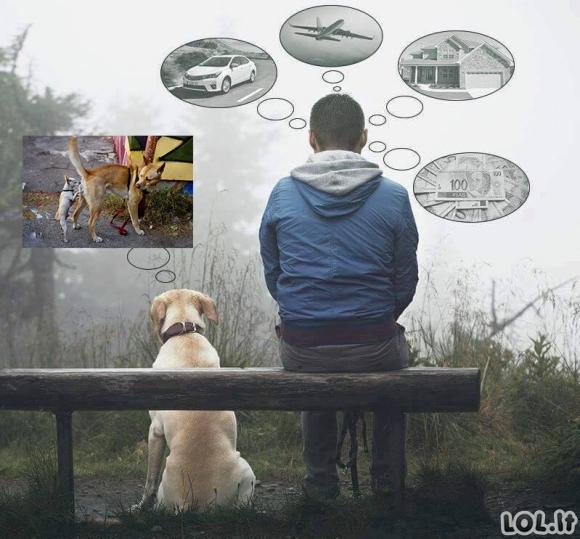 Žmonių ir gyvūnų svajonės