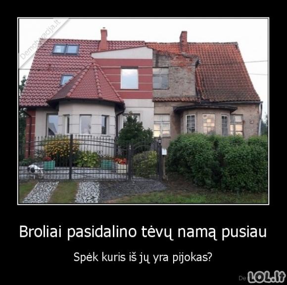Dviveidis namas