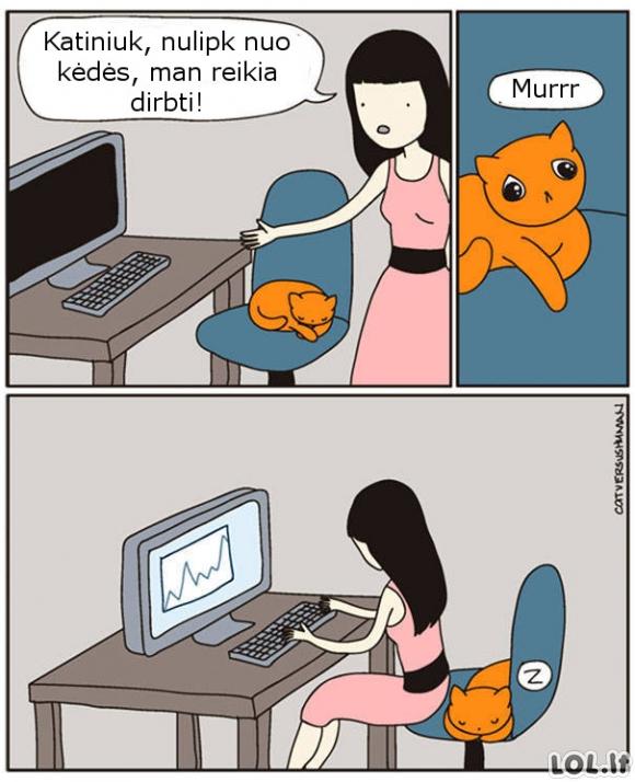 Kai katinas užima tavo vietą