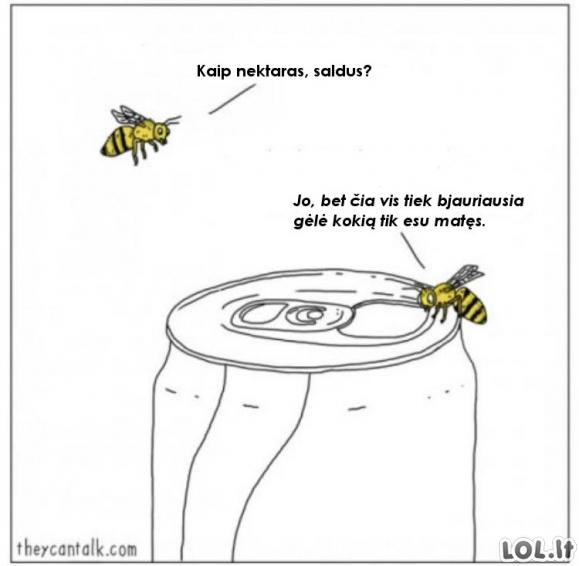 Šiuolaikinės bitės