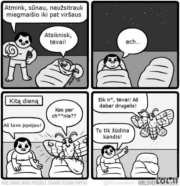 Naujasis drugelis