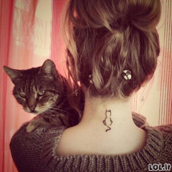 20 minimalistinių kačių tatuiruočių