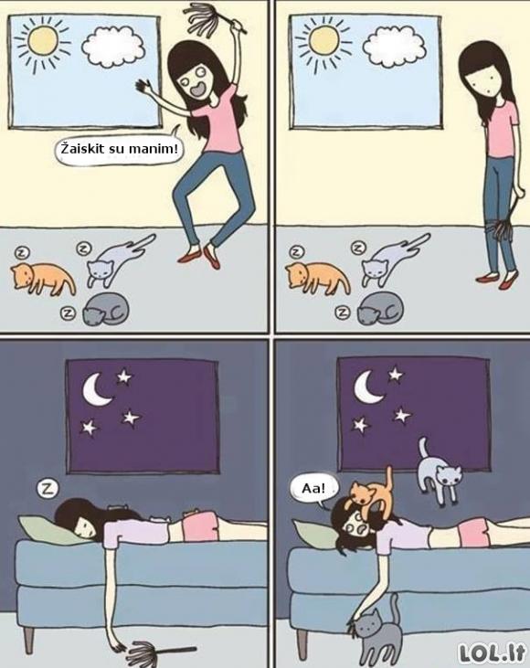 Problemos su katukais