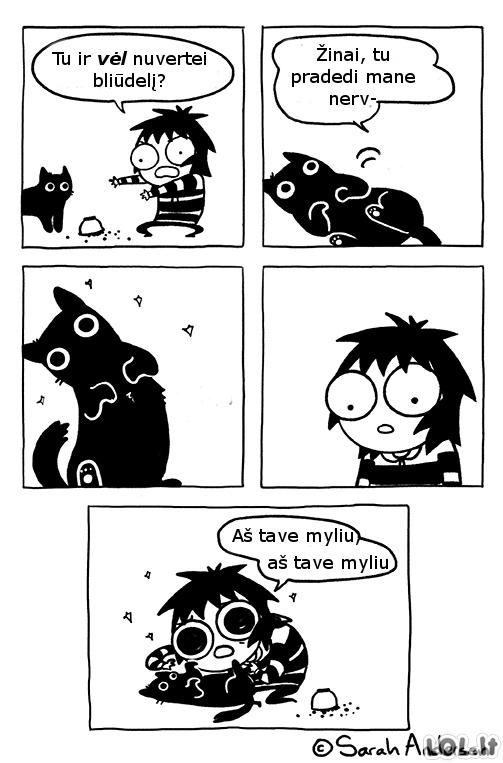 Problemos su katuku