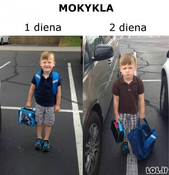 Mokykla