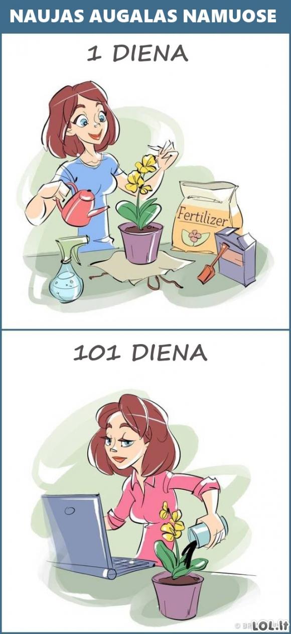 1 ir 101 naujų dalykų diena [12 FOTO]