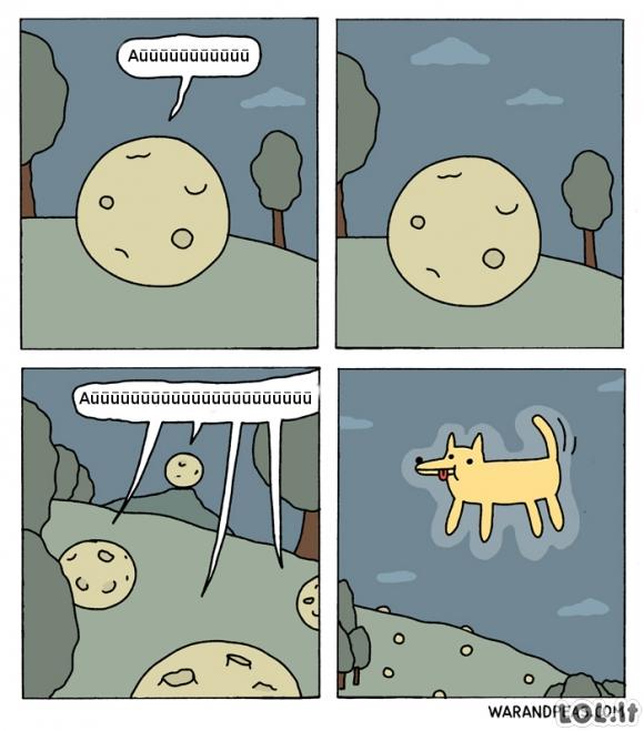 Alternatyvi visata