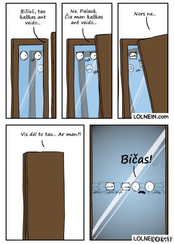 Kai susitinka du veidrodžiai