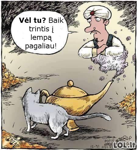 Katinas trolis