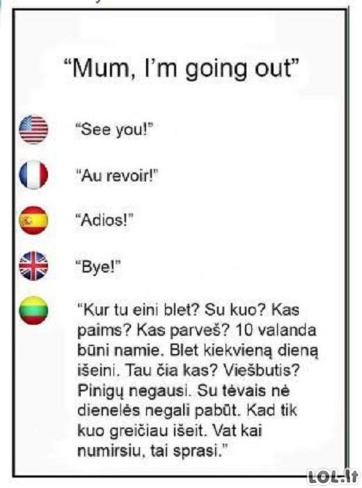 Tarptautinės kalbos pamokėlė