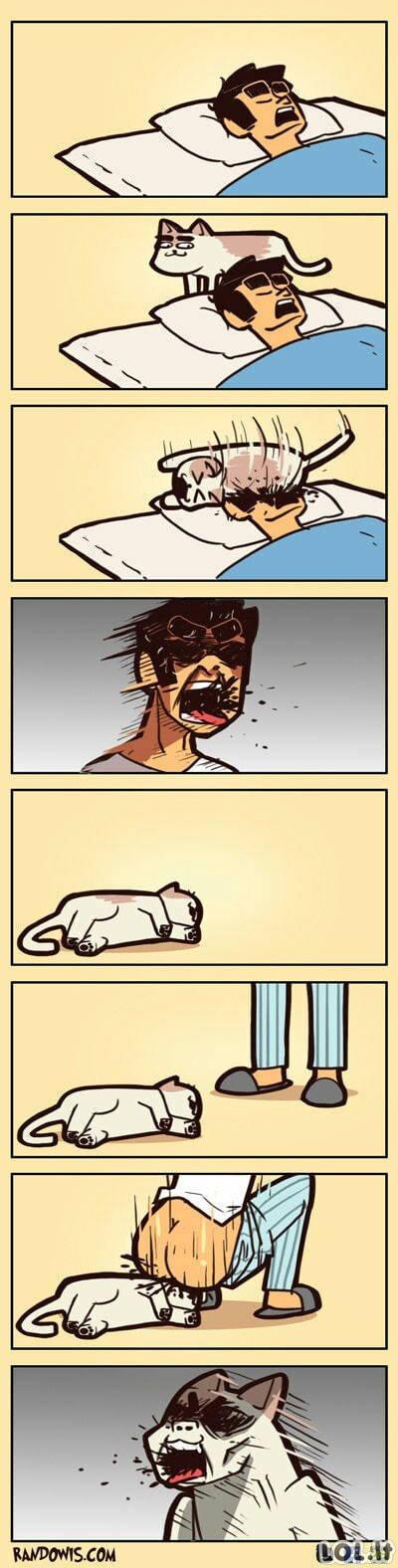 Kaip atkeršyti katinui