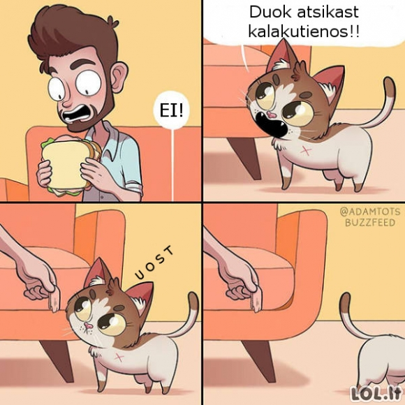 Neapsisprendęs katinas