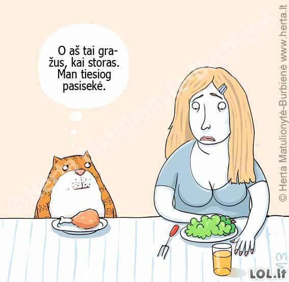 Katėms geriau nei žmonėms