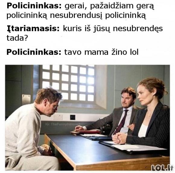 Policininkų žaidimai