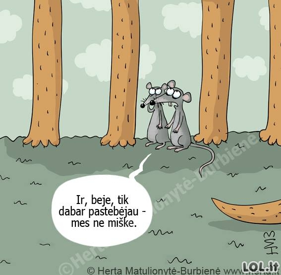 Pasimetusios pelės