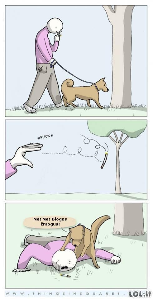 Tvarkingas šuo