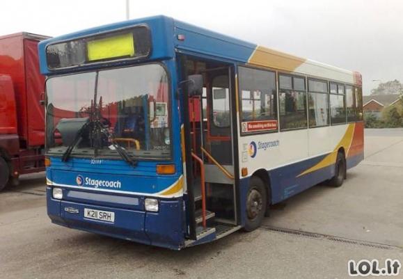 Šeima seną autobusą pavertė svajonių kemperiu [GALERIJA]