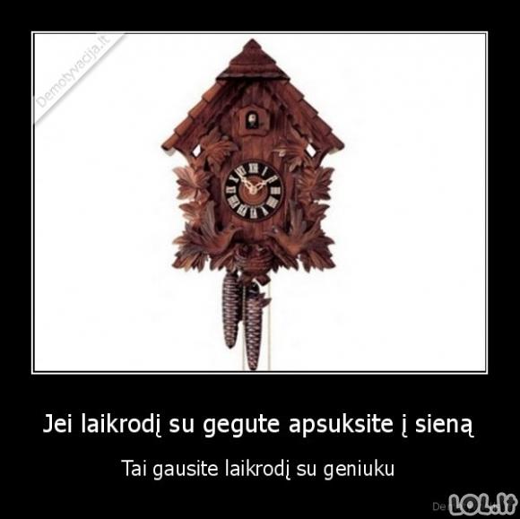 Laikrodis su geniuku