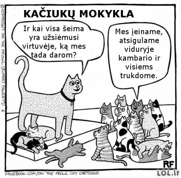 Kačiukų mokykla