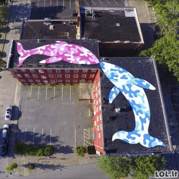 Įspūdingi minimalistiniai gatvės meno darbai