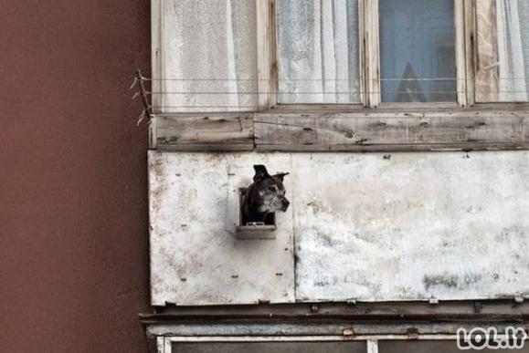 Keisti Rusijos balkonai